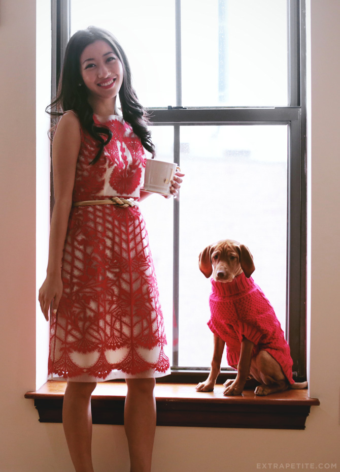 Anthropologie holiday dress petite1