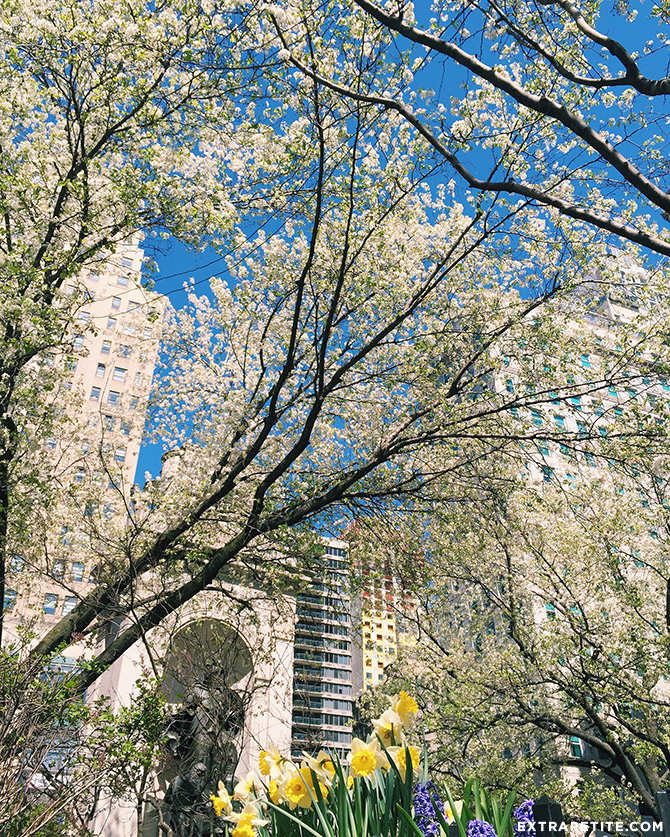 new york city spring herald square park