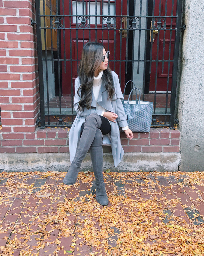 boston bay village gray goyard st louis pm tote winter outfit