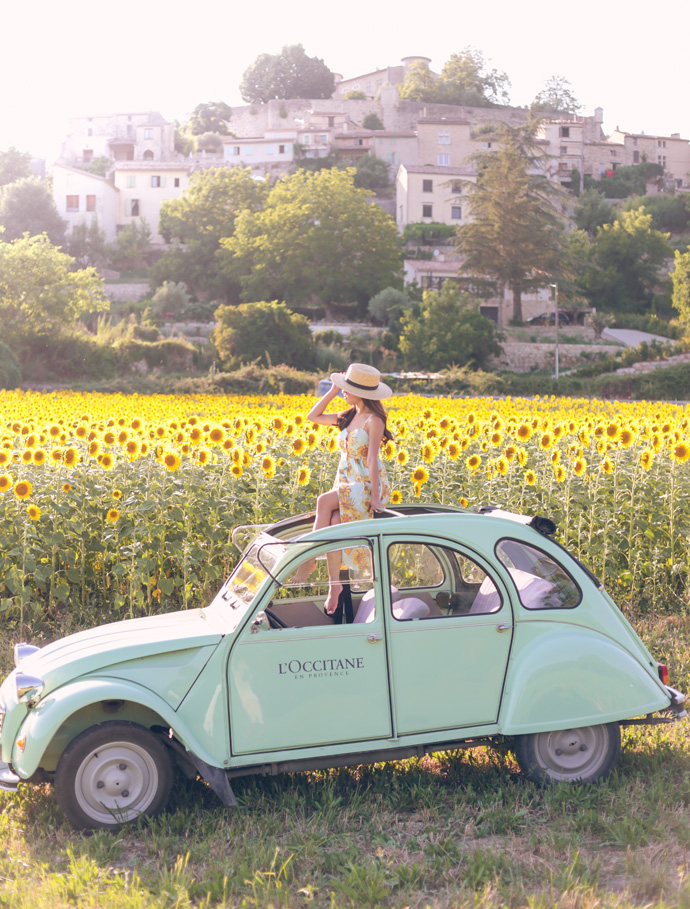 sunflower fields provence france loccitane vintage car