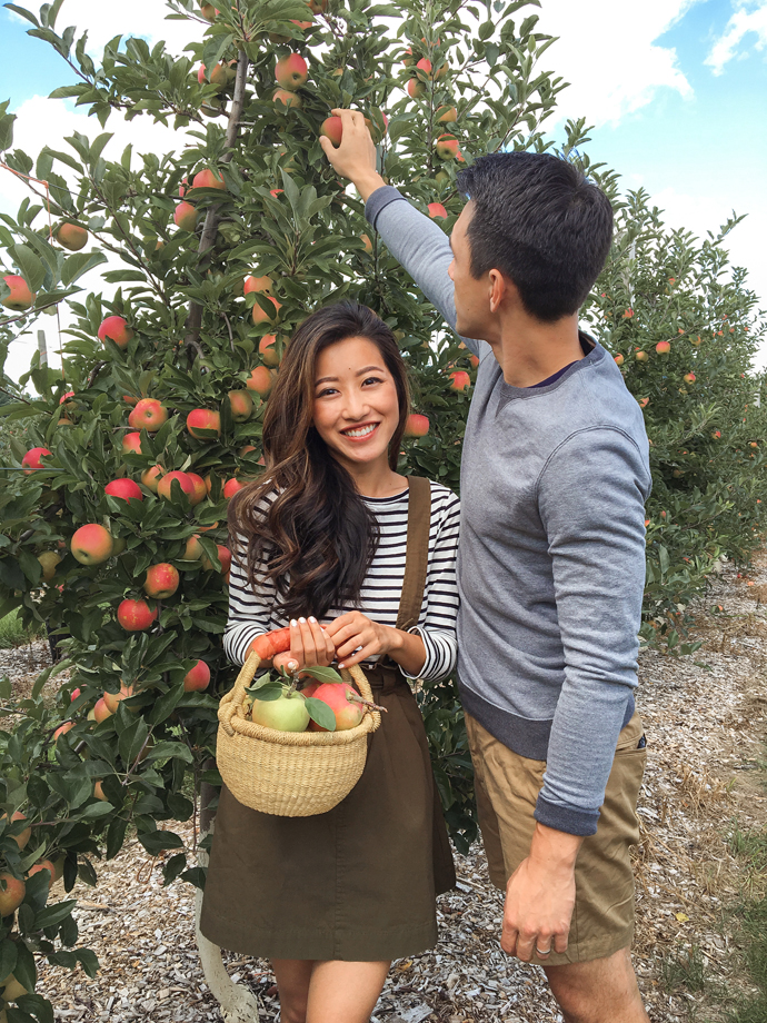 boston fall engagement photo ideas apple picking orchard
